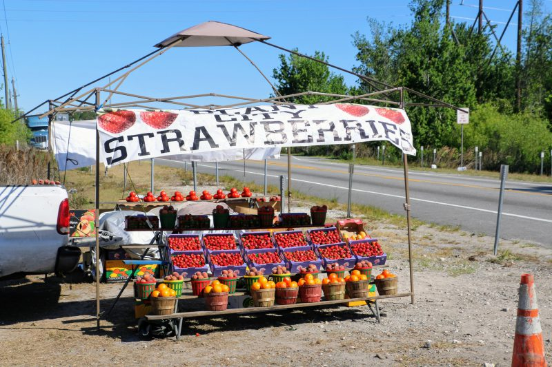 Fruit stand Florida
