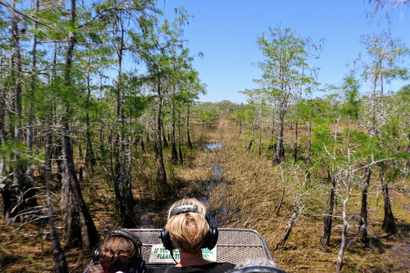 Down South Airboat Tours Everglades