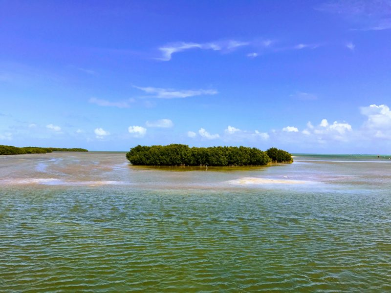 Coral Reef State Park boat tour